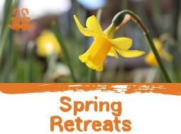 spring-mini-image-home