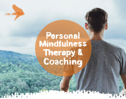 Personal Mindfulness Coaching and Therapy