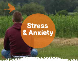 Mindfulness for Stress and Anxiety